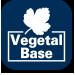 vegetal_base